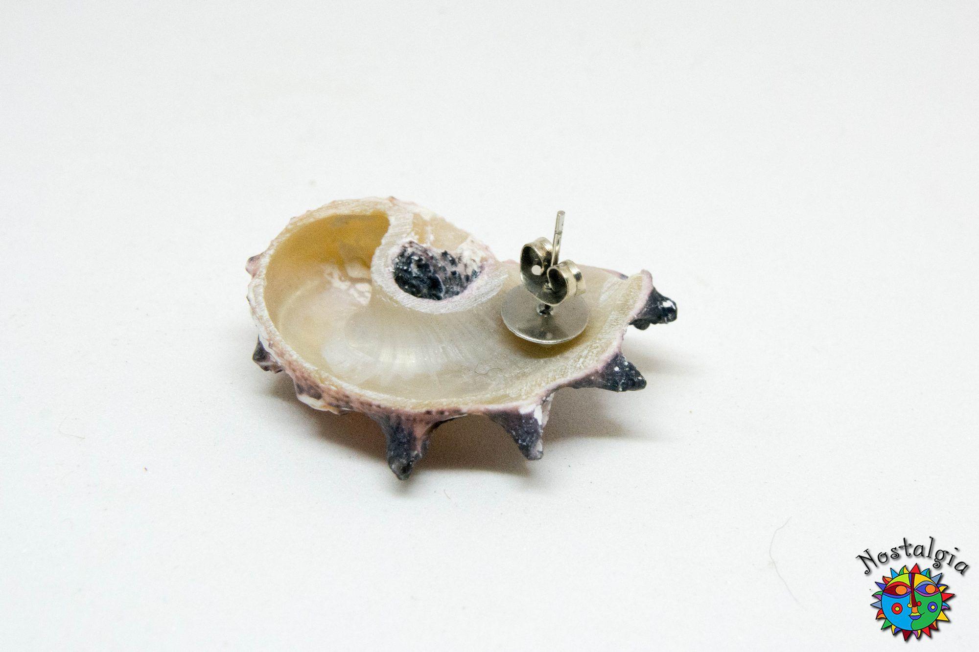 Σκουλαρίκια με κοχύλια